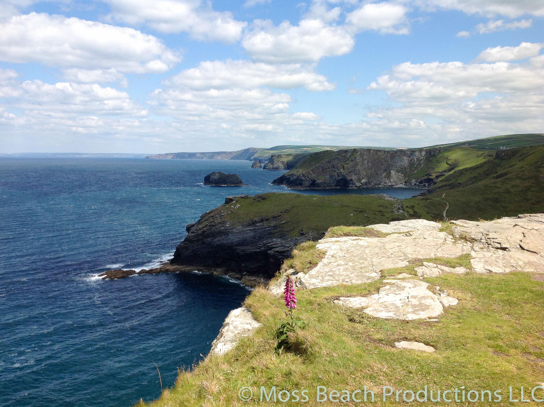 Seeking King Arthur on the cliffs of Tintagel